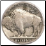 Genuine Buffalo Nickel